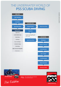 Flowchart Immersioni PSS